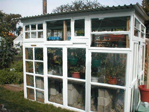 Gewächshaus aus Recyclingfenster