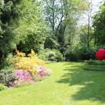 Ein verträumter Garten