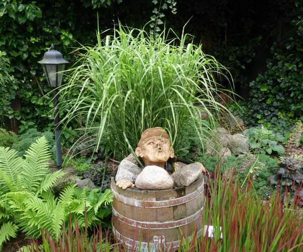 Mini-Teich in einem Holzfass (Bottich)