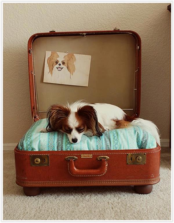 Hundebett aus Koffer