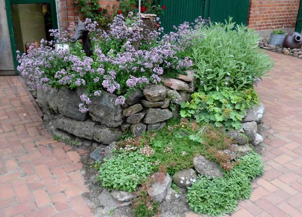 Ein Kräutergarten für zu Hause – Blog AN NA Haus und