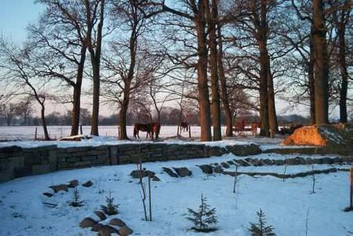 Wall im Winter