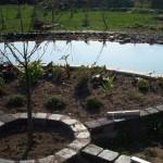 Rondell am Teich