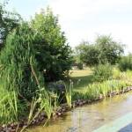 Linke Seite Teich