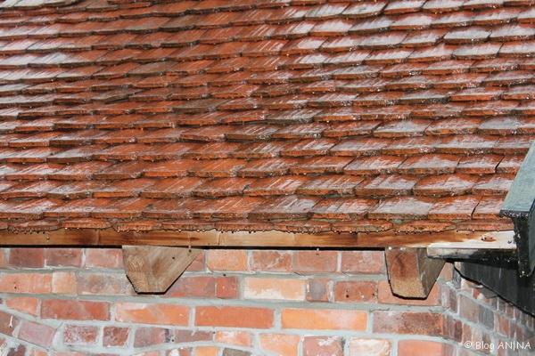 Regennasses Dach