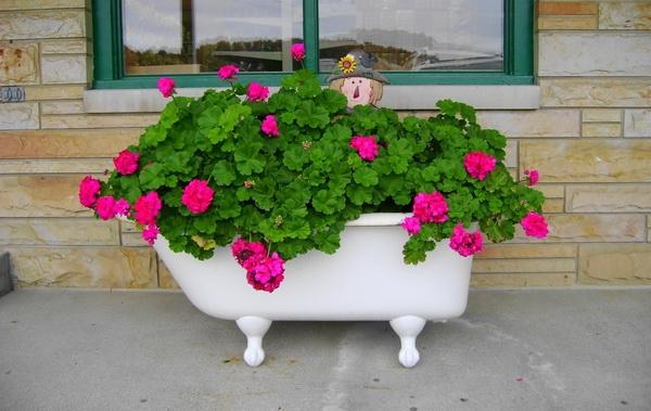 Eine bepflanzte Badewanne