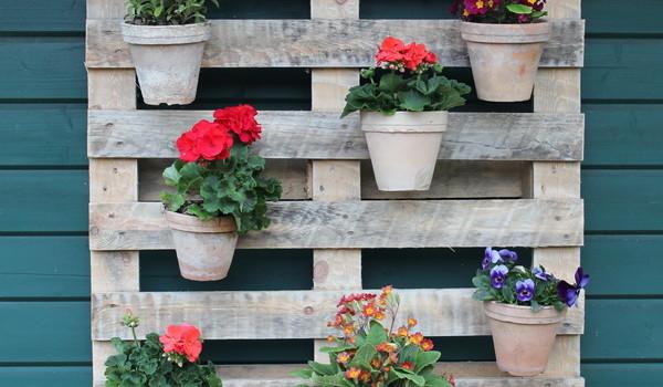 Blumenpalette an einer Laubenwand