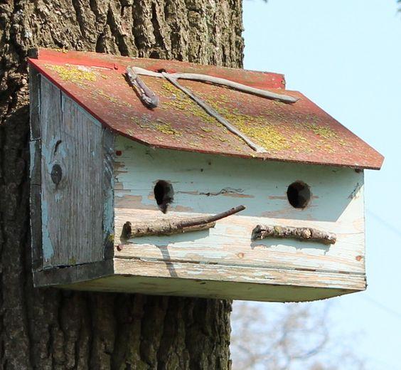 Doppelvogelhaus