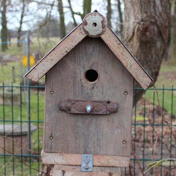 vogelhaus6