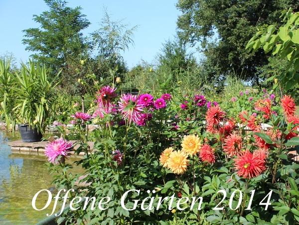 Offene Gärten 2014