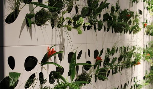 Grüne Wand aus Systemelementen