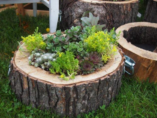 Succulenten in Holztrog mit Henkel