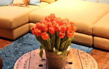 Mit Farben den Wohnraum auffrischen