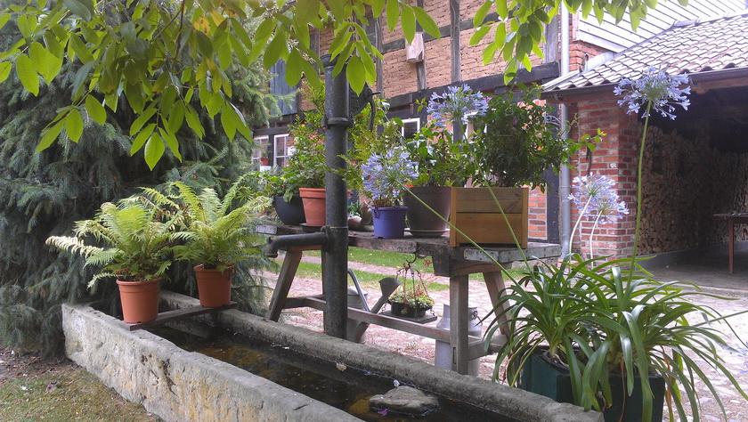 Der alte Brunnen mit Wassertrog