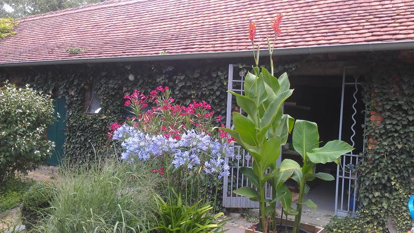 Blumenbeet vor dem Hundezwinger