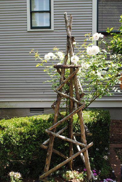 Baumholz-Obelisk mit Rosen