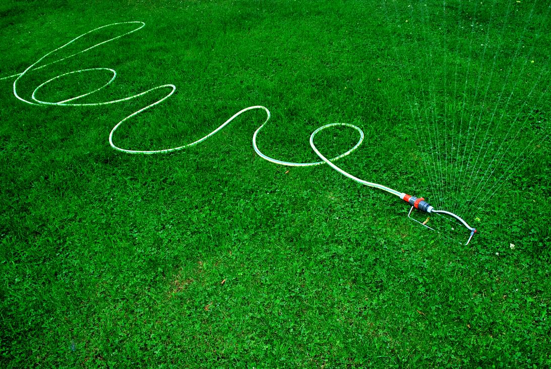 Gartenbewässerung mit Schlauch und Sprenger.Bild: kallejipp / photocase.de