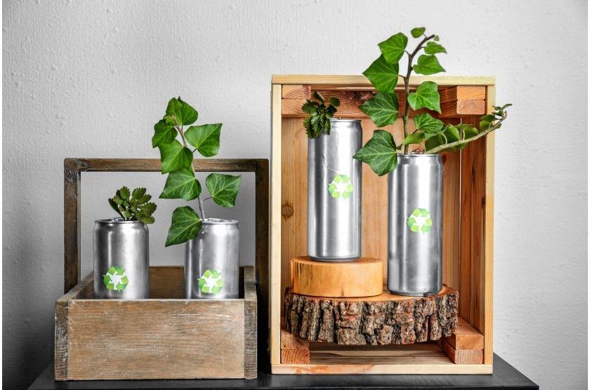 Blechdosen mit Pflanzen